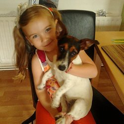 Lost dog on 12 Dec 2012 in tallaght dublin 24. female jack russell lost on the 12.12.2012 in tallaght brokview area... very frendly 8month old dogy please ring me on 0868957710or 0866627080 thank you