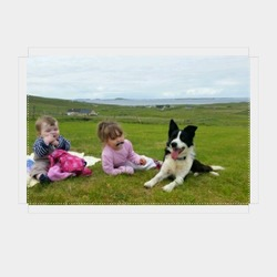 Lost dog on 31 Mar 2016 in Aughleam/Blacksod/Belmullet. Marley is a loving black and white collie whos 6 years old. he had a brown collar on him with his name and our number. Hes really friendly and will come if you call him. Please help bring him back to our heartbroken home. From Blacksod Belmullet area
